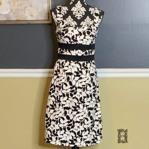White House Black Market Sheath Dress Sz 6